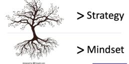 strategy vs mindset